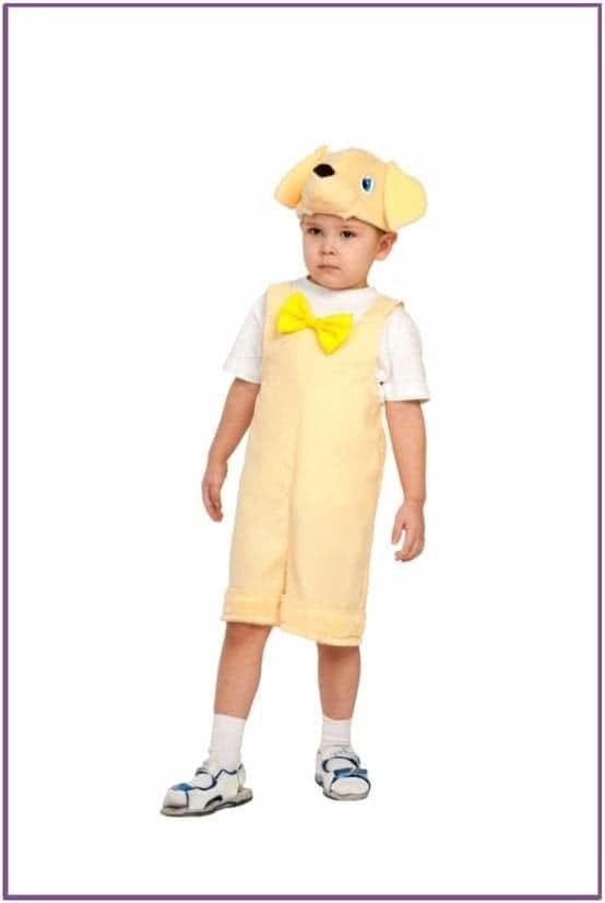Детский костюм Лабрадора
