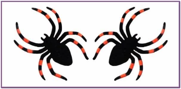 Два красно черных паука