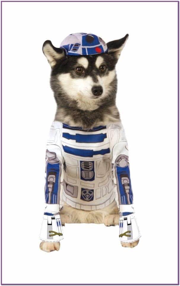 Костюм R2D2 для собак