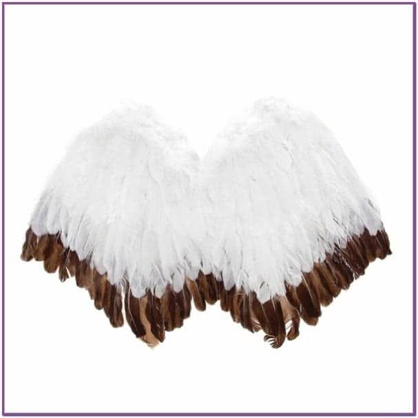 Крылья ангела бело-коричневые